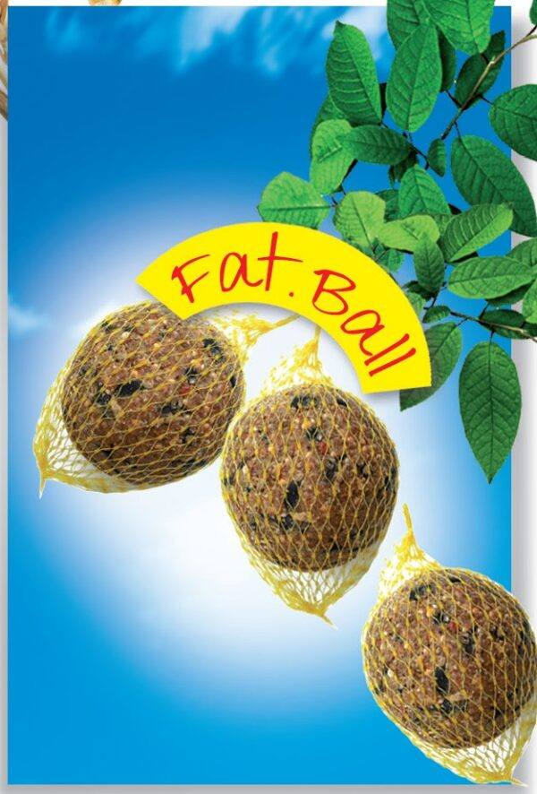 Fat ball - 6 pz