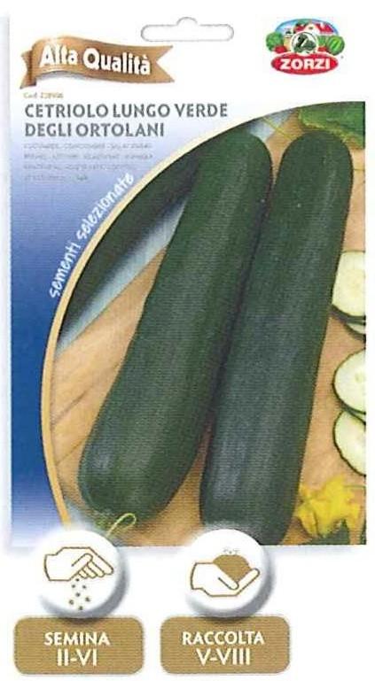 Cetriolo lungo verde degli ortolani