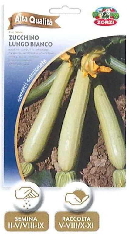 Zucchino lungo bianco