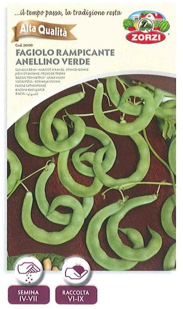 Fagiolo rampicante anellino verde - 250gr