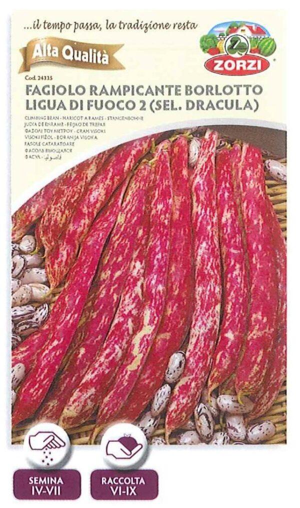 Fagiolo rampicante borlotto lingua di fuoco 2 (sel. Dracula) - 250gr