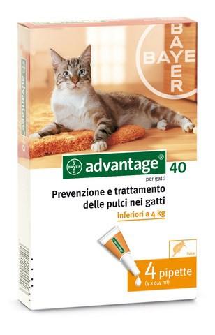 Advantage antiparassitari gatti - 4 pz