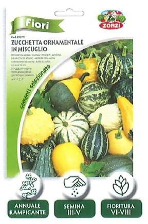 FIORI - zucchetta ornamentale