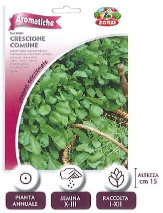 AROMATICHE - crescione